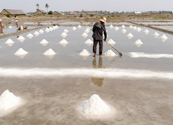 kampot-salt-fields-2